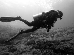 The author diving in Bali